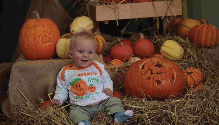 Riverford Pumpkin Day at Riverford Farm, Sutton Scotney. Pictured: cute pumpkin Miles Beatty blends in with a display