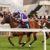 Bath Racecourse - Bath Cup